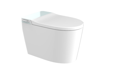 What companies are producing wall hung toilets ?